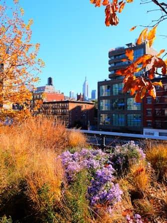 High Line Park i New York - Udsigt