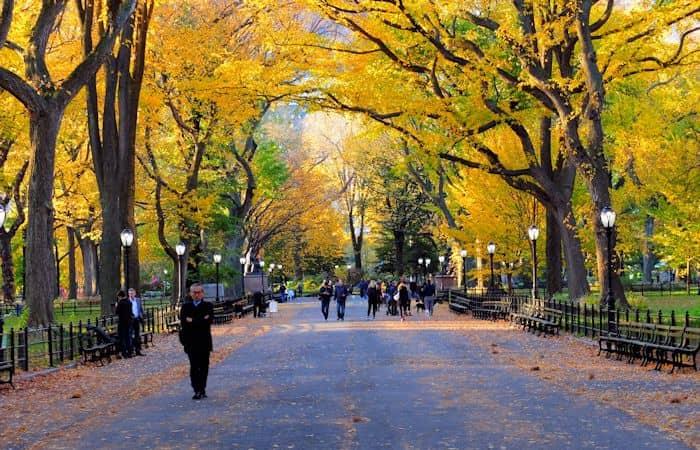 Central Park - Efterår