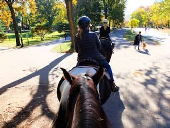 Central Park - Ridetur