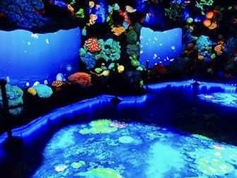 National Geographic Encounter Ocean Odyssey - Det dybe hav