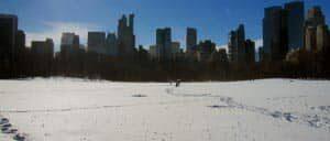 Gennemsnitlige temperaturer i New York