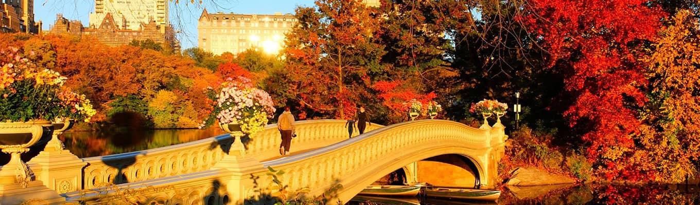 Efterår i Central Park