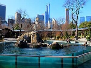 Central Park Zoo billetter